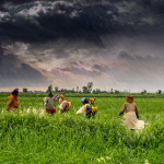(1)_Agriculture_and_rural_farms_of_India
